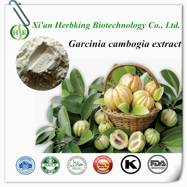Loss weight garcinia cambogia extract