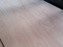 18mm maple plywood