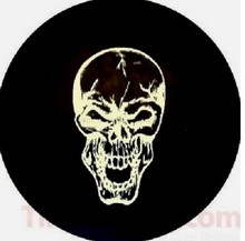 In stock and cheap golf cart wheel cover