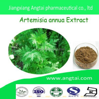 high quality 100%Artemisia Annua Extract 99% Artemisinin Powder with low price