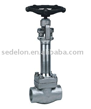 Forged Steel A105 Cryogenic Gate Valve Manual