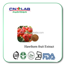 2017 Factory Supply 100% Natural Hawthorn Fruit Extract 2%-90% Flavone