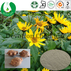 Hot sale Jerusalem Artichoke Extract/GMP&BV factory supply Jerusalem Artichoke Extract- INULIN