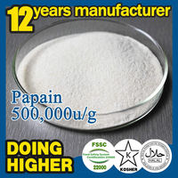 100% natural pure papaya powder high quality papain Medicine Grade msm powder