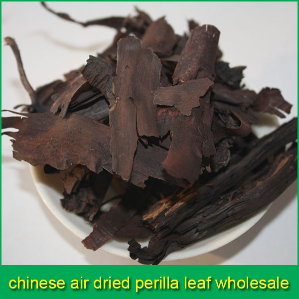 chinese air dried perilla leaf wholesale