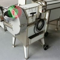 Guangdong factory Direct selling leafy/stem/root vegetable cutter machine sh-100