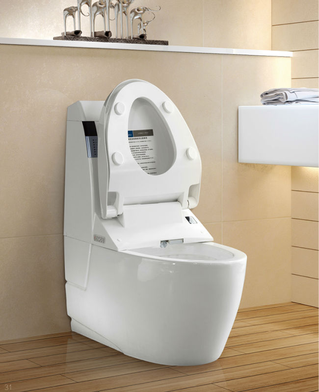 Toilets For Sale Beautiful Japanese Toilets Price Images
