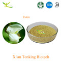 Natural Sophora Japonica Extract Rutin powder