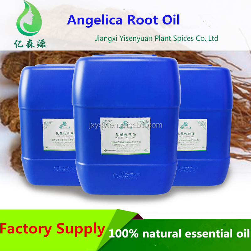 Chinese Herb Oil Angelica Root Oil&Angelica Oil Bulk Wholesale Price