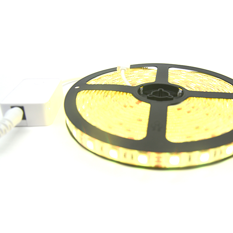 High quality Magic color SMD5050 flexible DMX RGB digital led strip