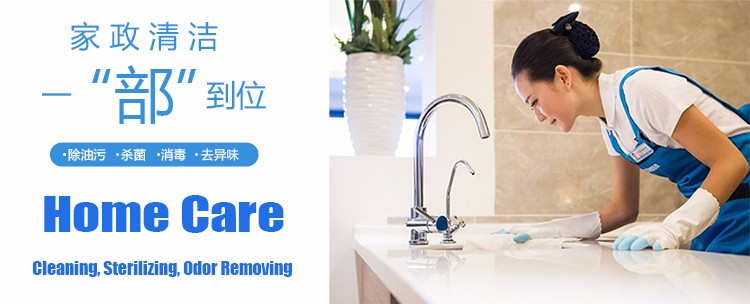 Steam Cleaner for Home Care.jpg