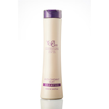 Professional hair care Anti-Oxidant silk shampoo