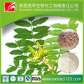 boswellic acid powder boswellia sorrata extract,Olibanum Extract