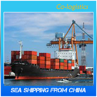 Copy brand shoes and clothes ship from china to dubai ----Chris(Skype:colsales04)
