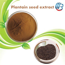 LanBing supply High Quality Semen Plantaginis Extract Plantain seed extract powder / psyllium seed powder
