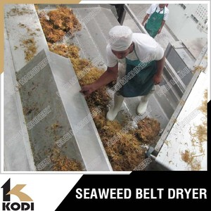 DW Model Continuous Seaweed Belt Dryer/Seaweed Conveyor Dryer/Seaweed Dryer