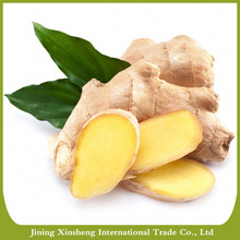 China dehydrated air dry ginger