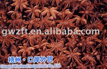 5-12 Chinese Star aniseeds