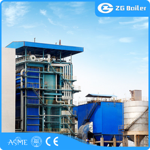 Advanced design biomass/coal fired 100 mw thermal power plant boiler