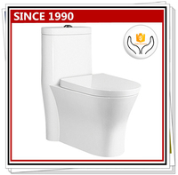 9163 washdown one-piece wc gravity flushing toilet
