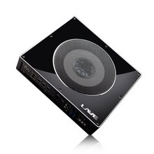 Slim design car subwoofer amplifier ** LV-8310 **