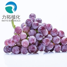 Fruit Juice Powder dried grape pulp powder