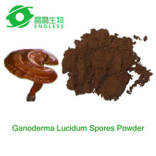 Natural ganoderma lucidum spore powder