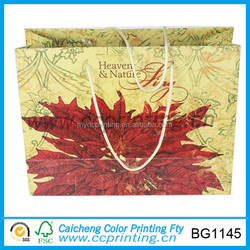 custom print cheap price advertising paper bag with drawstring