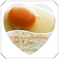 organic whey protein powder whey protein powder