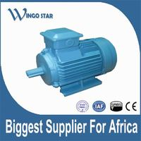 oil filled electrical water motors