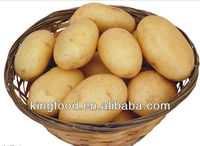 Supply new crop Chinese frozen potato
