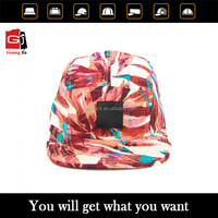2015 hot design manufacture 5 panel printing cap wholesale custom painters caps