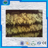 China good supplier best sell frozen beef cold storage room