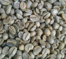 Catimor coffee bean Green coffe bean Yunnan coffee bean Arabica