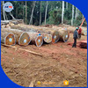 Tali price & Hardwood round logs from Africa Tali logs