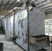 industrial Greensleeves belt hot air dryer for taro leaves