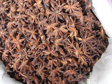 China spices---Anise Star