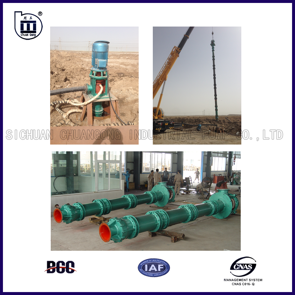 400~560kW/750r/min 700KGL Submersible Electric Vertical Long Shaft Water Pump