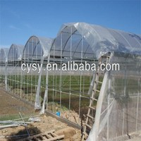 high quality with uv treated transparent plastic for greenhouse film
