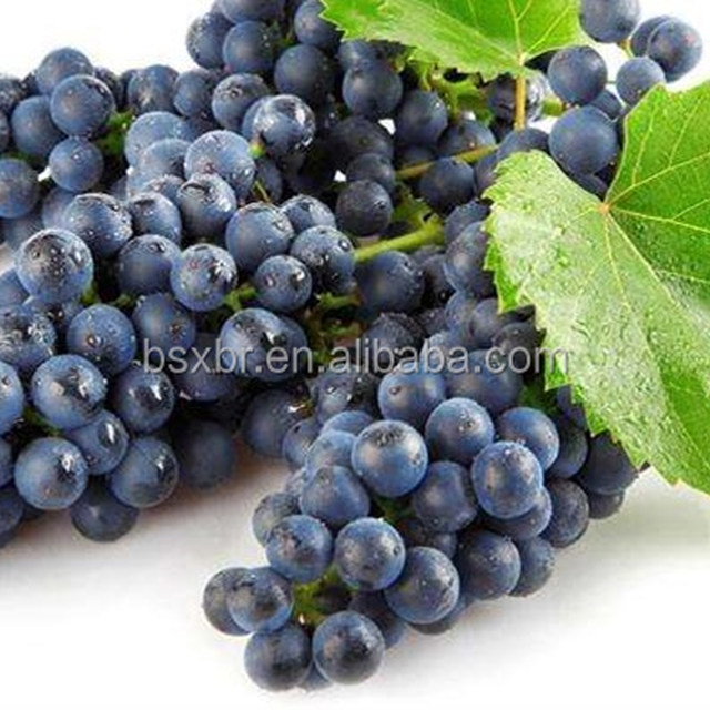 Best quality popular water soluble Black currant e liquid concentrate flavor