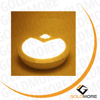 PIR and motion light sensor LED lighting round night light