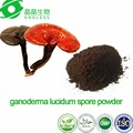 Wall-broken ganoderma lucidum spore powder