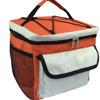 New 2016 Two Tones Design 12 Cans Fitness Cooler Bag With Side Pockets