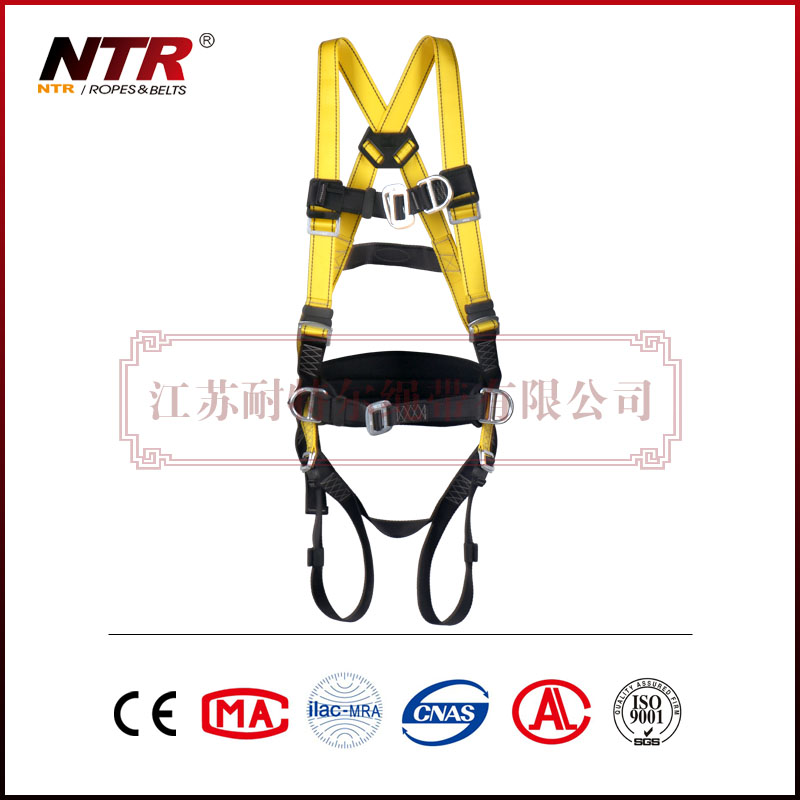 NTR BEESAFE 10P4F Safety Belt Full Body Harness