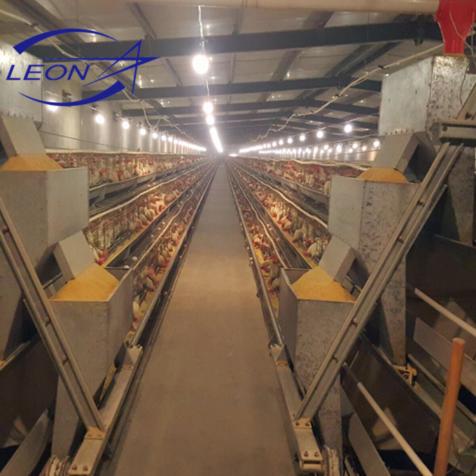 Leon Series chicken Battery Cage System for poultry house with CE certificate