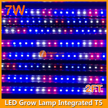 Tomato growing led light greenhouse hydroponically led grow tube bar lamp light T5
