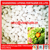 Manufacture of NPK FERTILIZER FOR CROP FRUIT AND VEGETABLE 10-10-14 10-10-10
