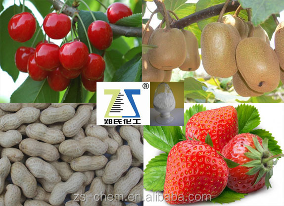 Growth regulator Agrochemical CPPU Forchlorfenuron 98% TC, professional manufacture
