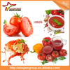 Best price tomato paste making machine tomato canning machine tomato paste sachet packing machine