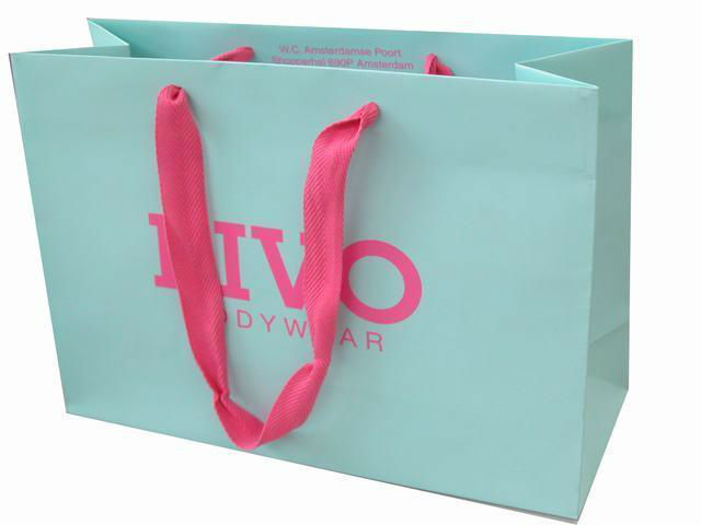 Logo Printed Paper Shopping Bags for Promotions,Events, Shopping, Department Stores